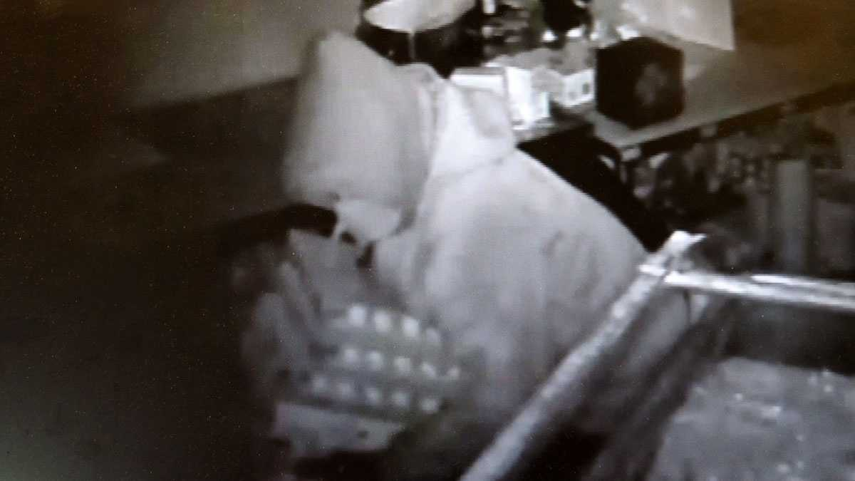 Egg thief 3.jpg