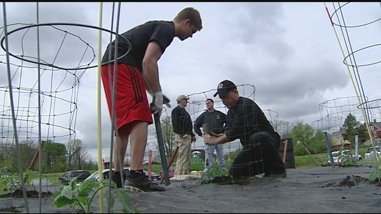 Volunteers plant urban garden to benefit less fortunate