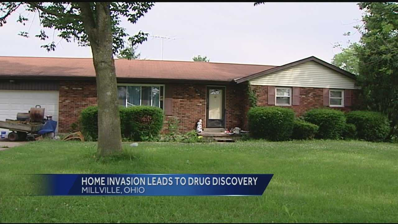 Pot growing operation discovered after home owner reports home invasion