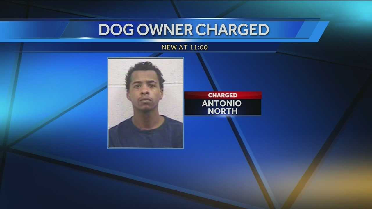owner charged pit bulls NKY.jpg