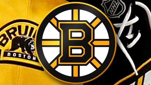 Bruins Large.jpg