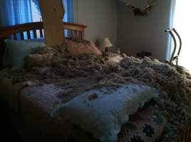 A Buxton woman was sleeping in this bed when the ceiling caved in.  She is OK.