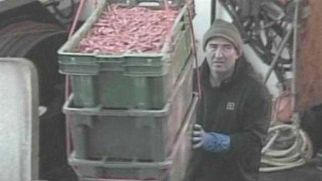 PORT Shrimp Season