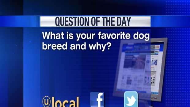 Question of the Day Jan. 31