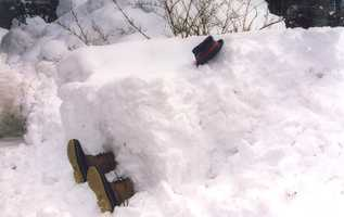 8: On February 9, 1969, 17 inches of snow fell in Portland.