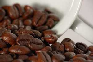 Coffee beans are considered defective when 10 percent or more are insect-infested or insect damaged.
