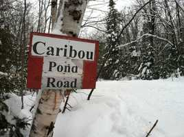 At 9 a.m. Tuesday, Maine Game Wardens announced that a snowmobiler found Joy alive on the Caribou Pond Trail.