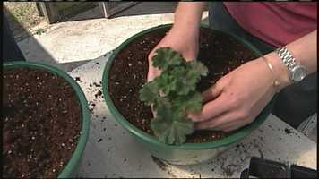 WMTW News 8's Norm Karkos talks about the importance of testing your soil.