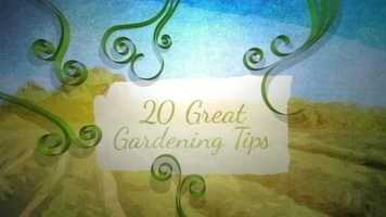 During the month of May, WMTW News 8's Norm Karkos brought you 20 Great Gardenin Tips. Click through to watch each tip.