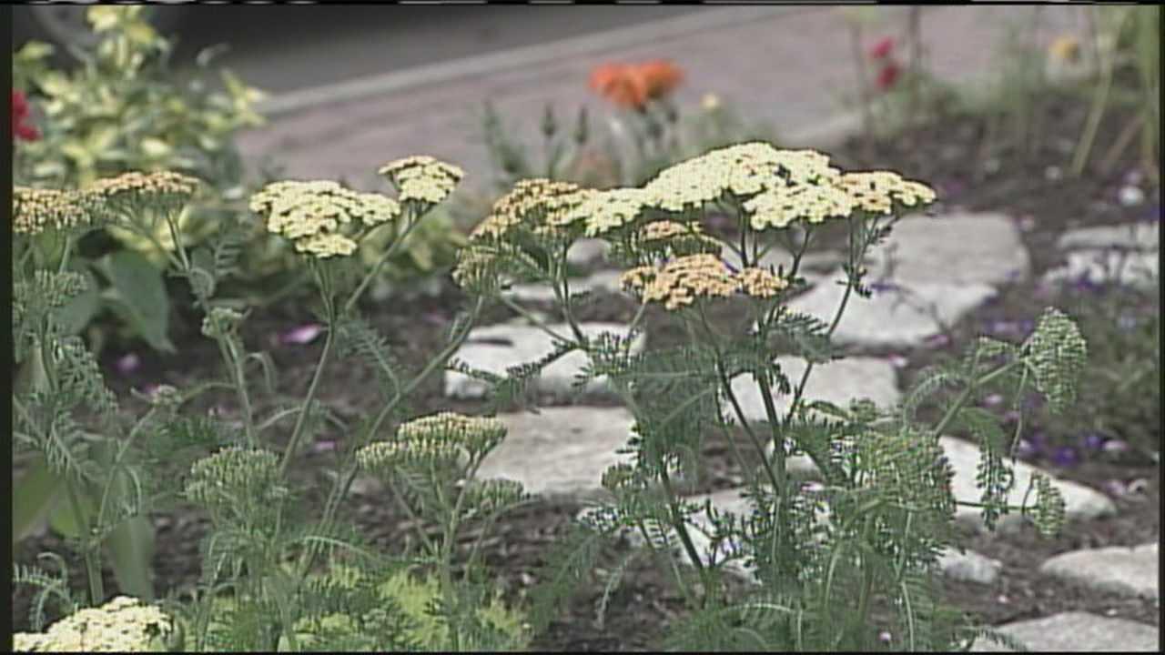 Tour highlights secret gardens on Munjoy Hill