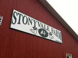 Stonyvale dairy farm in Exeter, about 20 miles west of Bangor, mixes the cow manure with organic food waste it buys to generate enough electricity to power 800 homes.