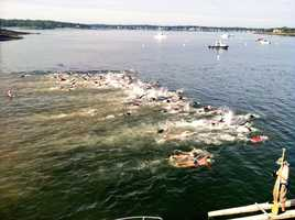 The swim is regarded as one of the top 50 open water swims in the country.