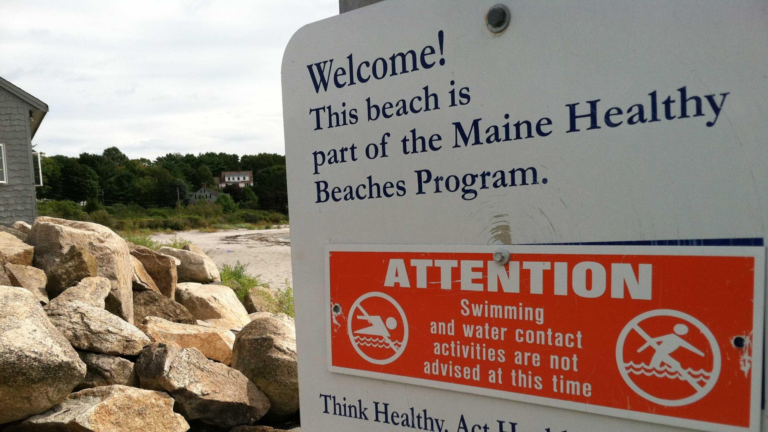 Cape Neddick Beach.JPG