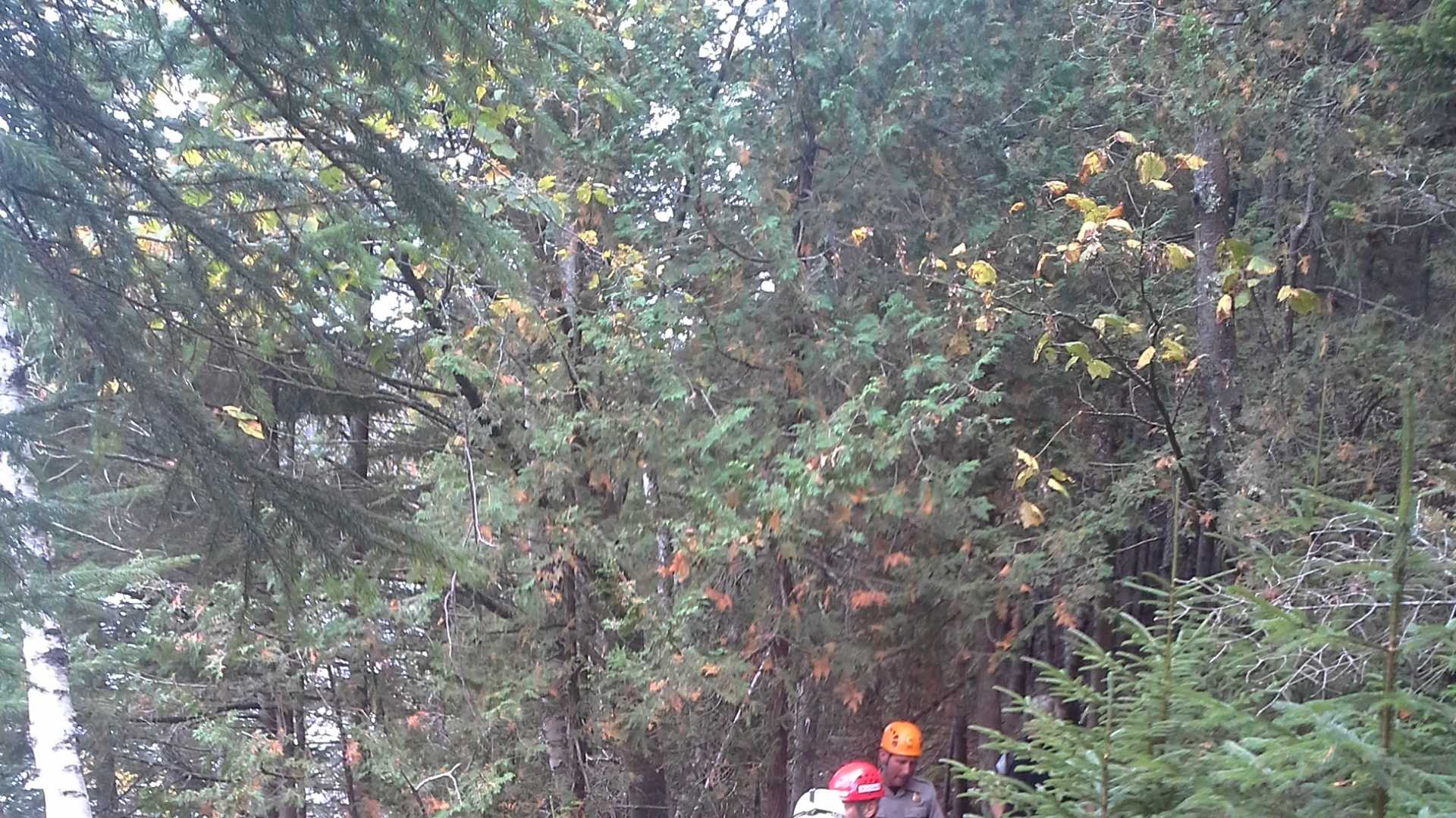 Acadia National Park rescue
