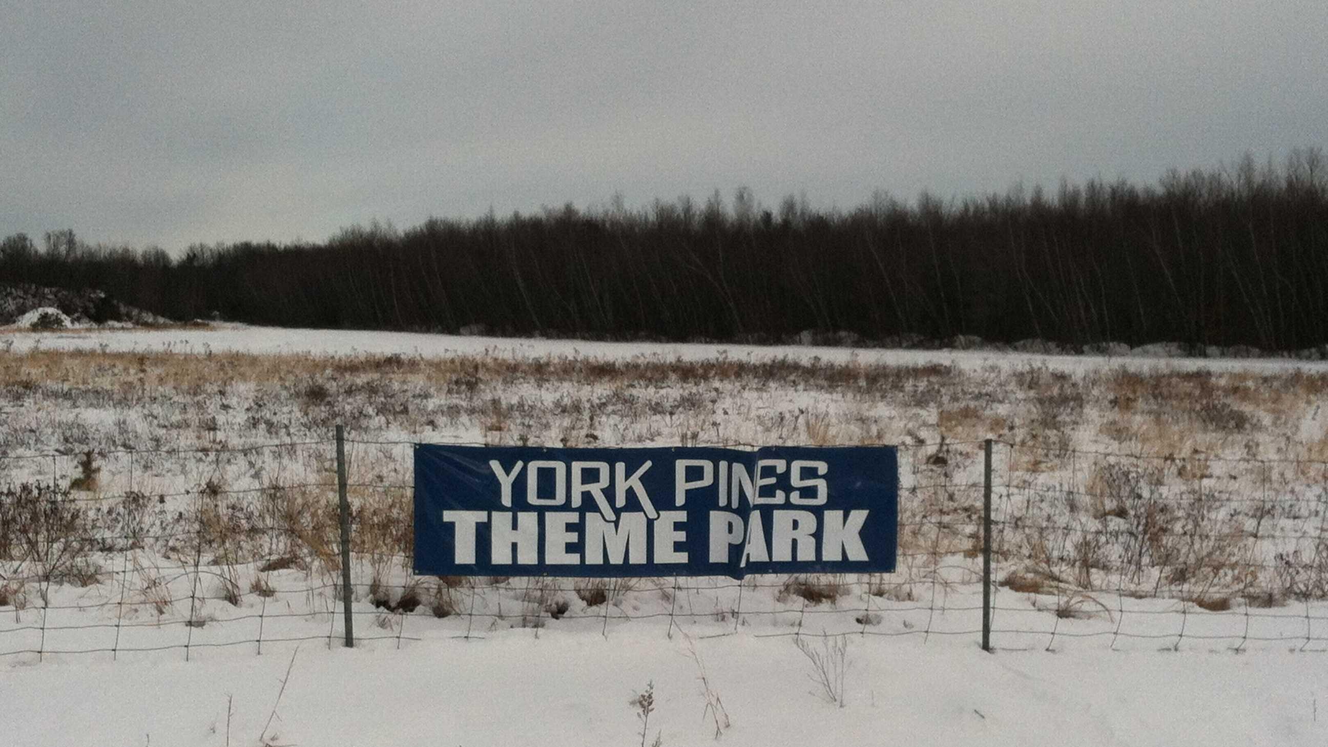 Theme Park.JPG
