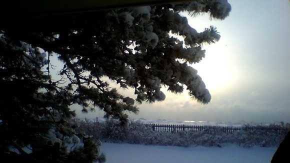 Monday Snowfall.jpg