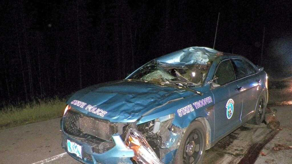 Trooper moose collision