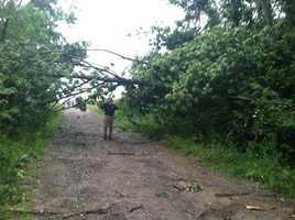 St. Albans storm damage