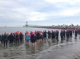 Swimmers line up along the shore in South Portland Sunday morning before starting a 1/3-swim in the Tri for a Cure.
