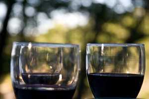 Tour Maine's wine trail