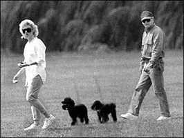 Bulger and Greig walking their dogs in South Boston