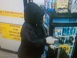 "Rochester Robbery ((Press Release)) On May 27, 2011 at 1:50am The Rochester Police Department responded to a report of an armed robbery at the Shell Station located at 198 Milton Road  Rochester,N.H.  The caller reported that a male entered the store displaying a handgun and wearing a black hooded jacket with a dark colored bandana covering his face. He approached the counter and demanded money. The suspect then took money from the register and cigarettes from the display counter and left the store on foot. The Rochester K-9 Team was working but was unable to locate the suspect.The suspect is described as&#x3B; a male, 18-25 years old. 5'8""-6' feet tallAverage build, Wearing a dark colored hooded jacket, blue jeans, and sneakers. Anyone with information about this crime is asked to call the Rochester Police Department at 330-7127 or Rochester Crimeline at 335-6500. You may also text&#x3B; TEXT4CASH + tip CRIMES (247637)"