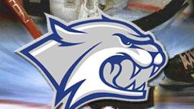 UNH Hockey Logo