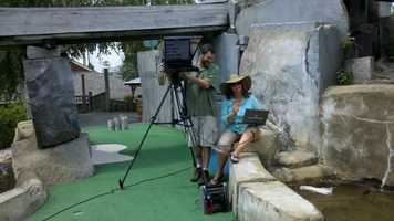 Paul and Maryann set up a shot on the mini-golf course.