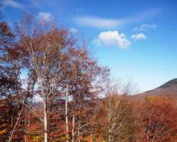 Loon Mountain was mentioned as a great spot to see the foliage.