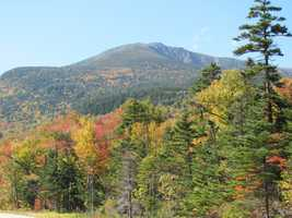 Here's a shot of the foliage at the White Mountains, another popular choice.