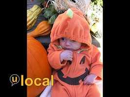 A pumpkin.