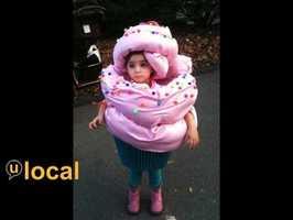 A cupcake.