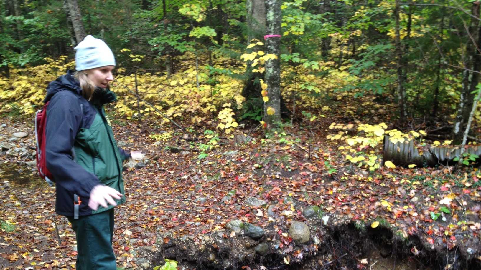 Officials tour damage done to the White Mountain National Forest by Tropical Storm Irene.