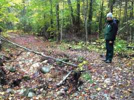 The National Forest Foundation on Wednesday announced a $2 million pledge to aid in the clean-up effort.