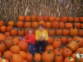 First, let's look at the pumpkin patches that garnered some votes (but not enough to break the top 5)...Here's a shot of Applecrest Farm Orchards in Hampton Falls, N.H.
