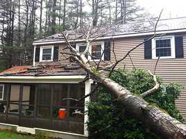 A tree falls onto a home in Amherst.