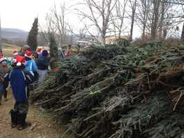 Since 2005, more than 100,000 Christmas trees have been donated to troops and military families.