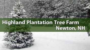 Highland Plantation Tree Farm, Newton