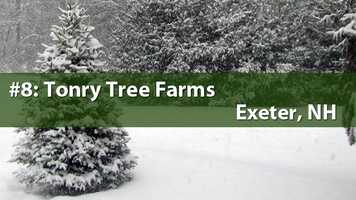 No. 8) Tonry Tree Farms, Exeter