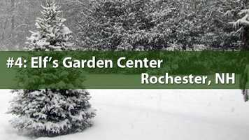 No. 4) Elf's Garden Center, Rochester