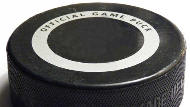hockey-puck-generic.jpg