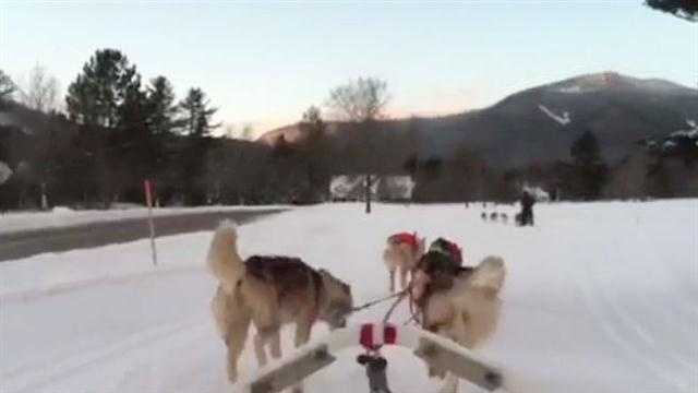 Valley Snow Dogz and voice of musher and owner Lidia Dale-Mesaros at Waterville Valley Golf Course, Sunday evening for a practice ride before offering tours to Waterville Valley guests. (Video by Paula Tracy)
