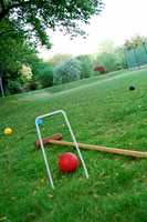 """What is something about Ray that may surprise you? He likes to play croquet. """"I have a court in my back yard. It's a lot tougher to lose croquet balls, compared to golf balls,"""" Ray said."""