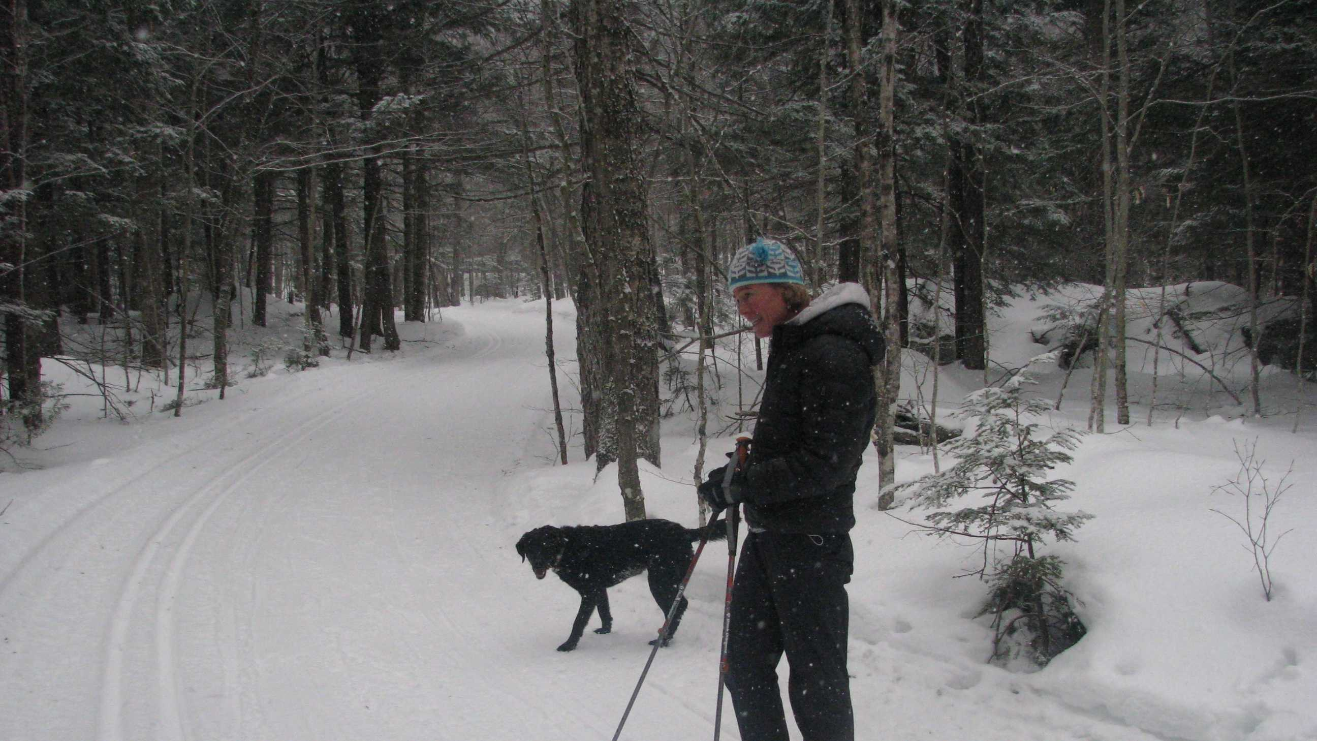 "Snowshoeing Saturday at Bear Notch Cross Country Touring Center in Bartlett was Cynthia Coffin of Center Harbor and her dog ""Megan."" The Bartlett area received about six inches of snow overnight and it is still snowing today, with most all the snowmobile, cross country and alpine trails open for everyone's enjoyment this week."