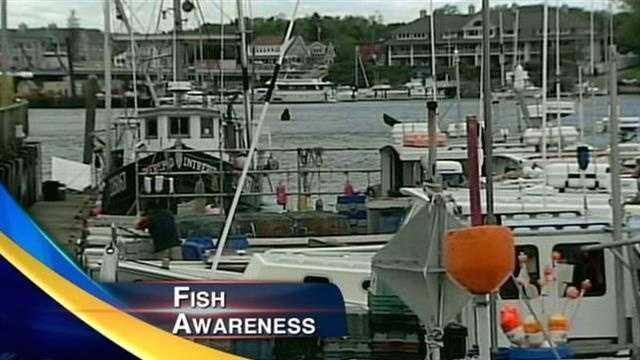fishing cuts image