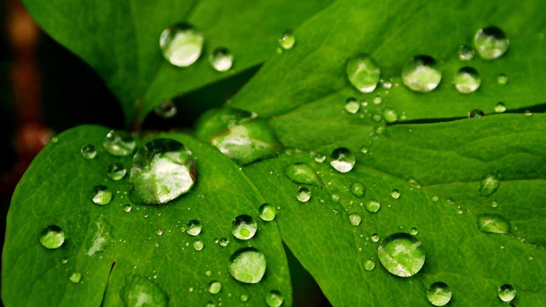 rain-ulocal-66.jpg