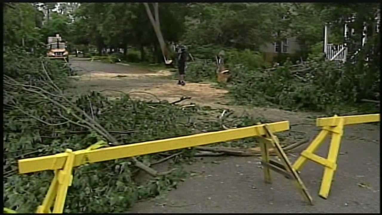 Crews cleaning up fallen trees, power lines on Seacoast