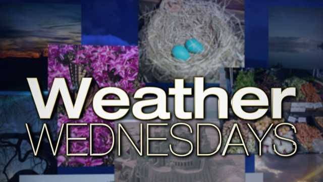 Weather Wednesdays