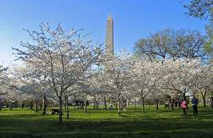 9.) Washington, D.C.