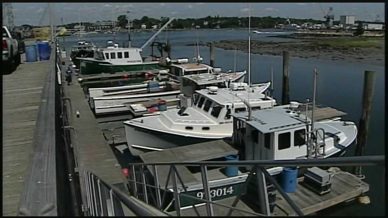 Fishing industry looks for solutions